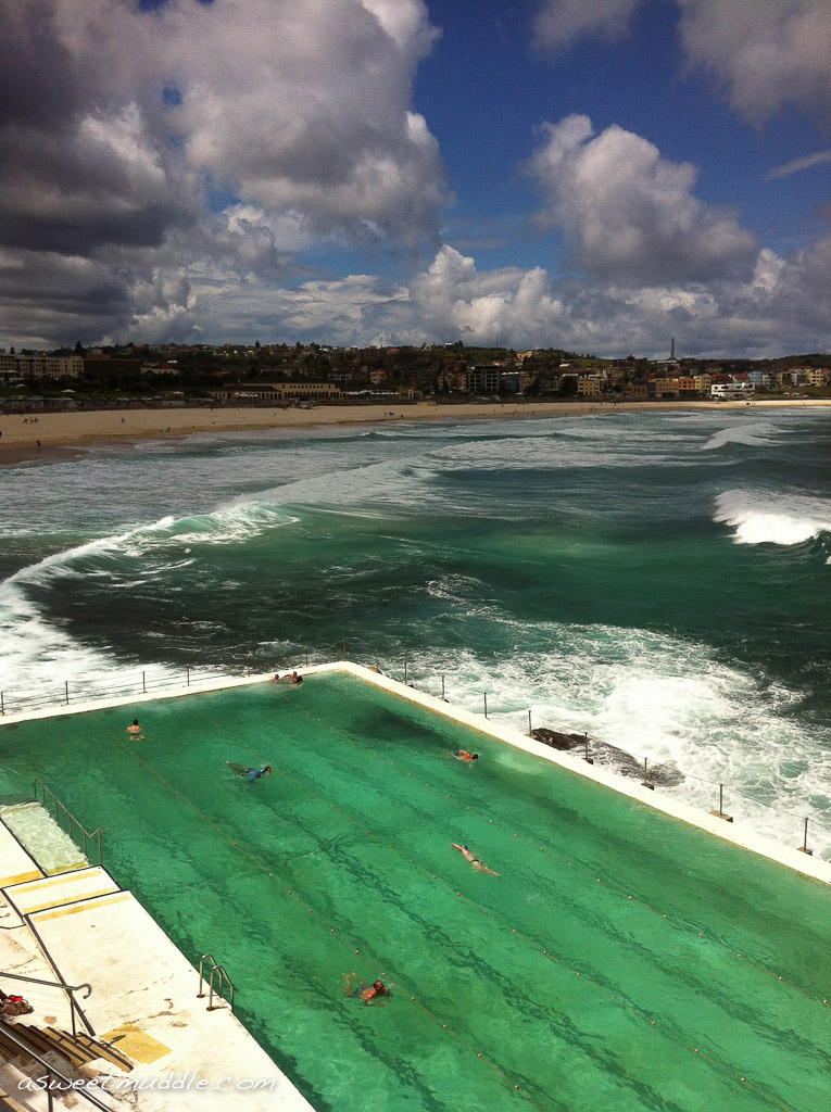 Lunch and drinks at Bondi's Icebergs